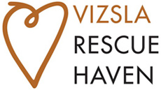 VIZSLA RESCUE HAVEN